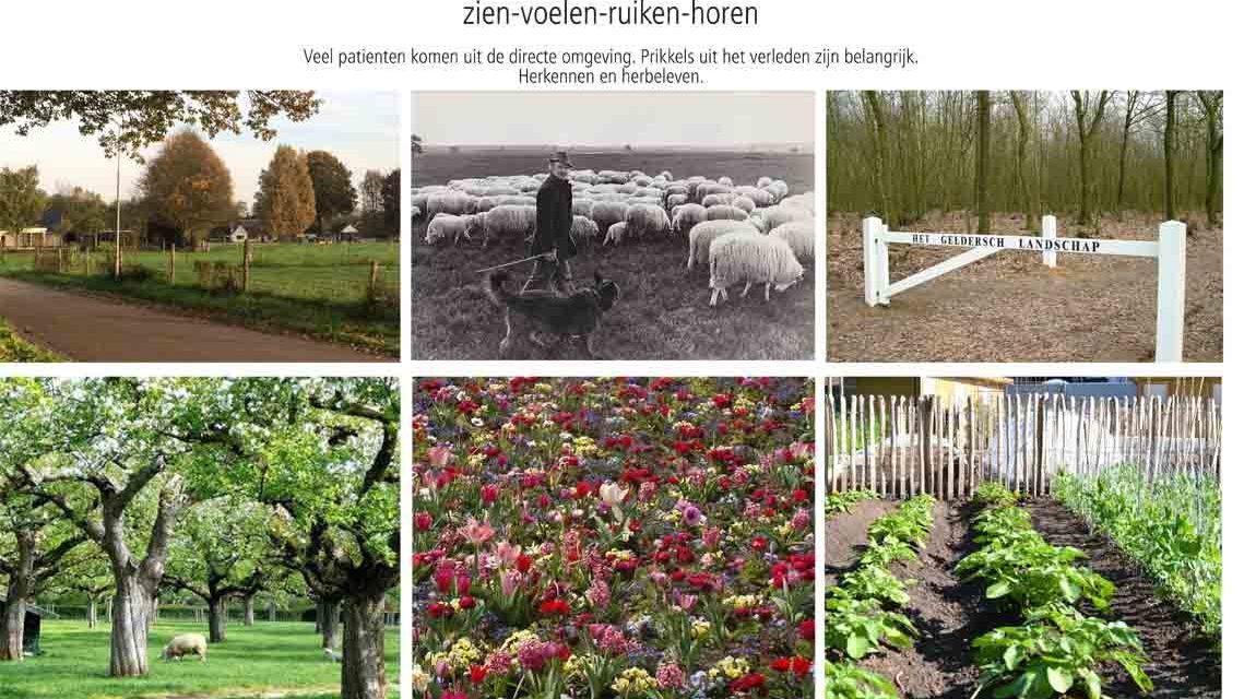 Diekman-landschapsarchitecten-woonzorginstelling-wendthorst-herkenningverleden-1139×640