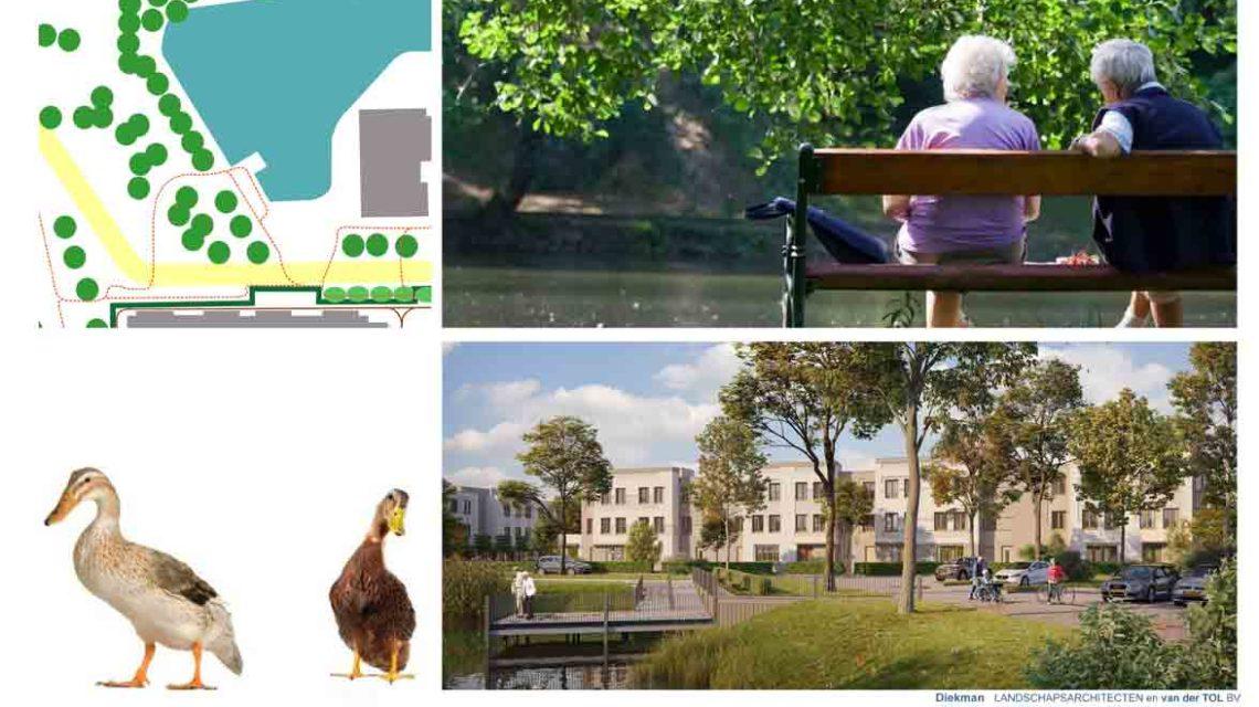Diekman-landschapsarchitecten-woonzorginstelling-wendthorst-wandelen-1140×640