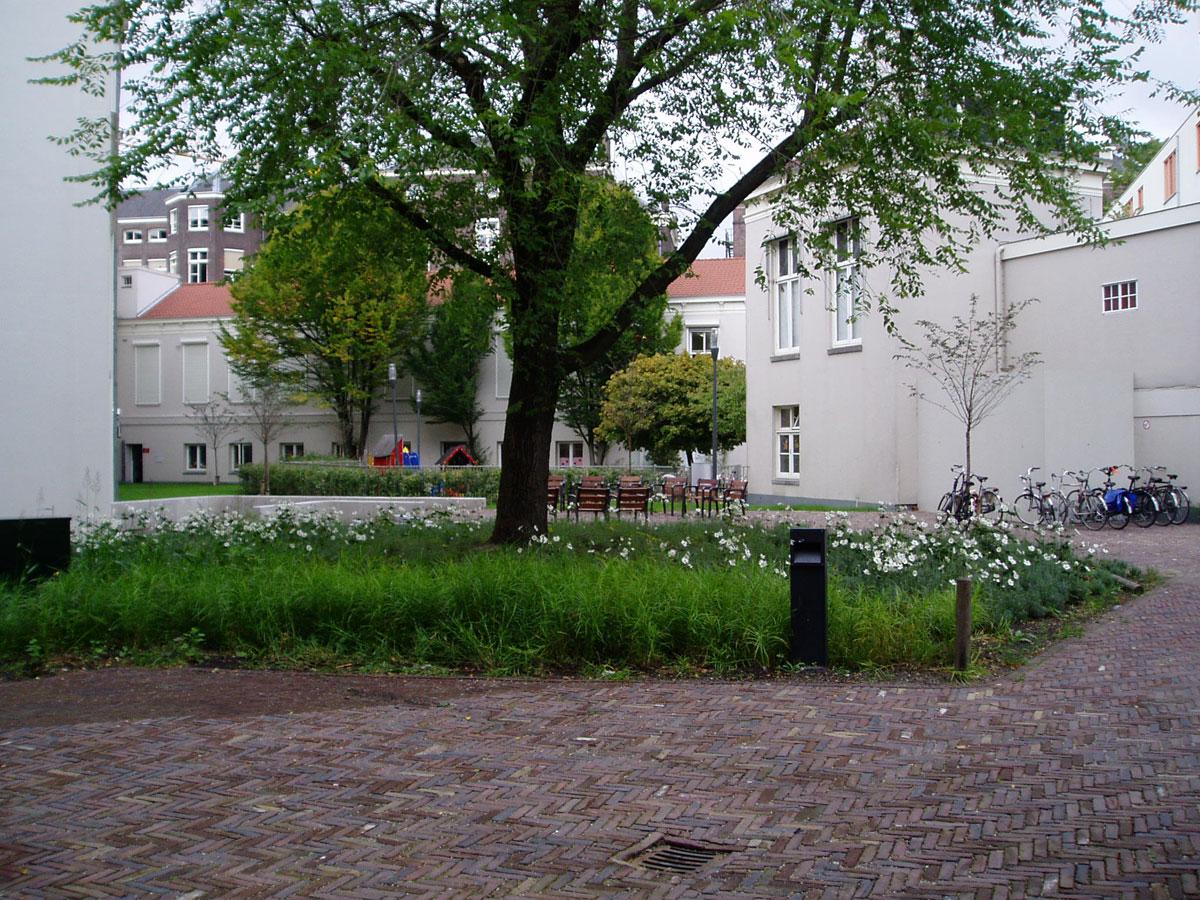 Diekman-landschapsarchitecte_UvA-P9060104