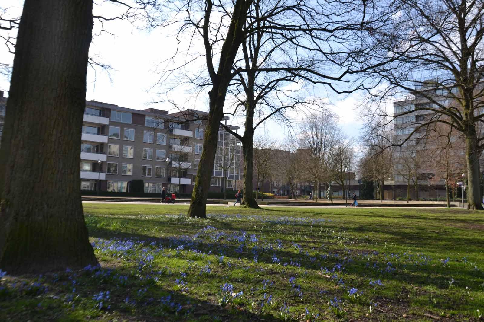 Diekman-landschapsarchitecten_-Beekpark-Apeldoorn_101_0126