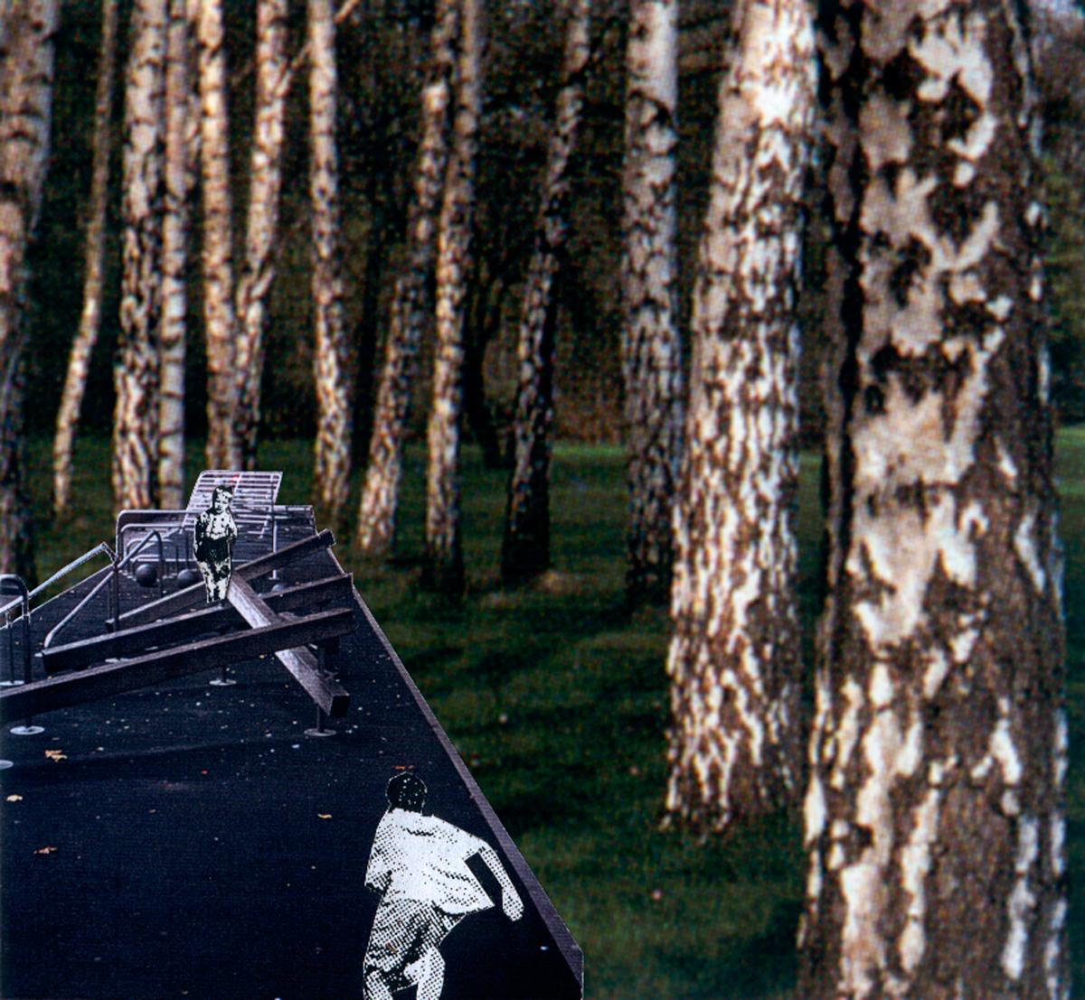 Diekman-landschapsarchitecten_-Floriande-eiland-10_collage-speelstrook