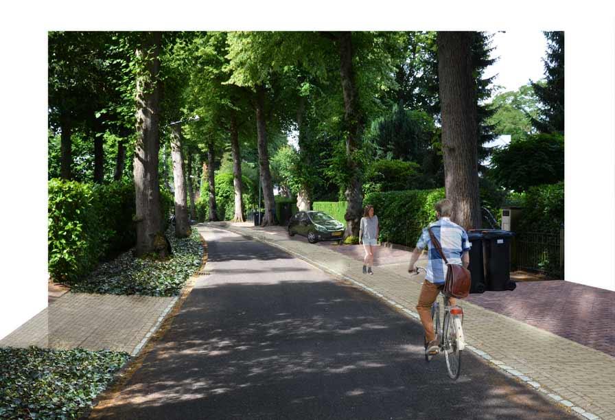 Diekman-landschapsarchitecten_Boomberg-Hilversum_-transformatie-woonstraten_Costeruslaan