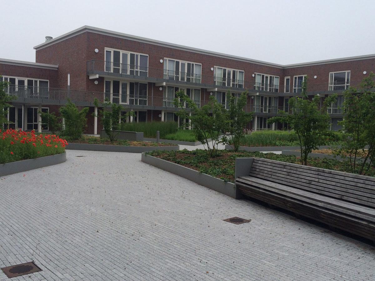 Diekman-landschapsarchitecten_Terwijde-BlokG_DSC__4627