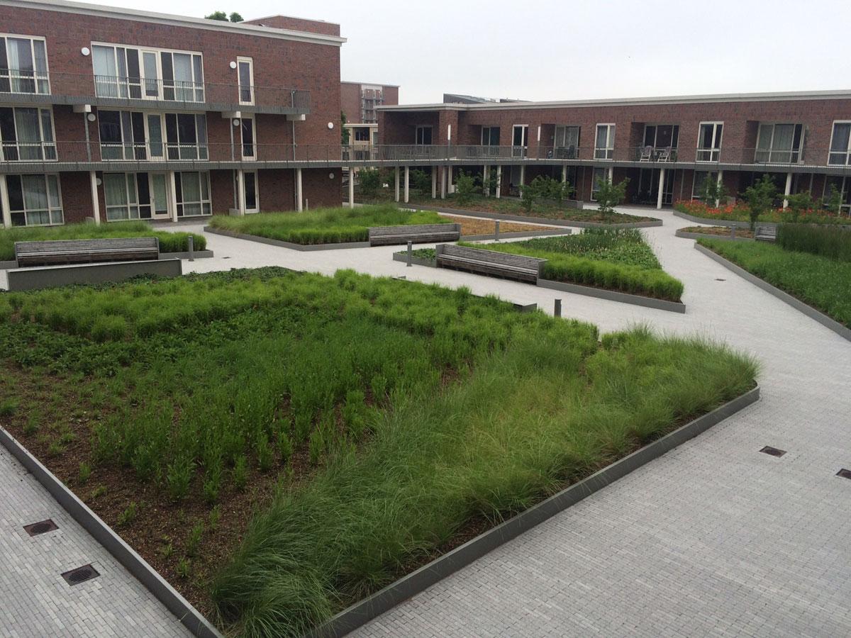 Diekman-landschapsarchitecten_Terwijde-BlokG_DSC__4632-1