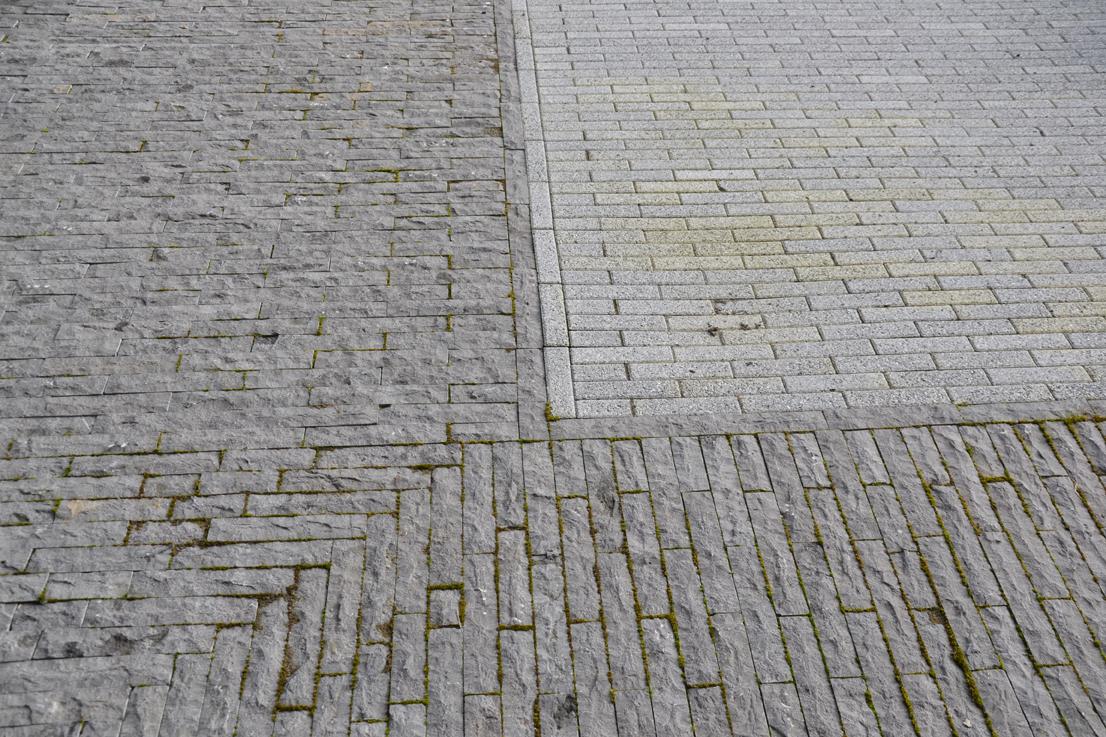 Diekman-landschapsarchitecten_daktuin_terwijde-blokG-margestrook-detail