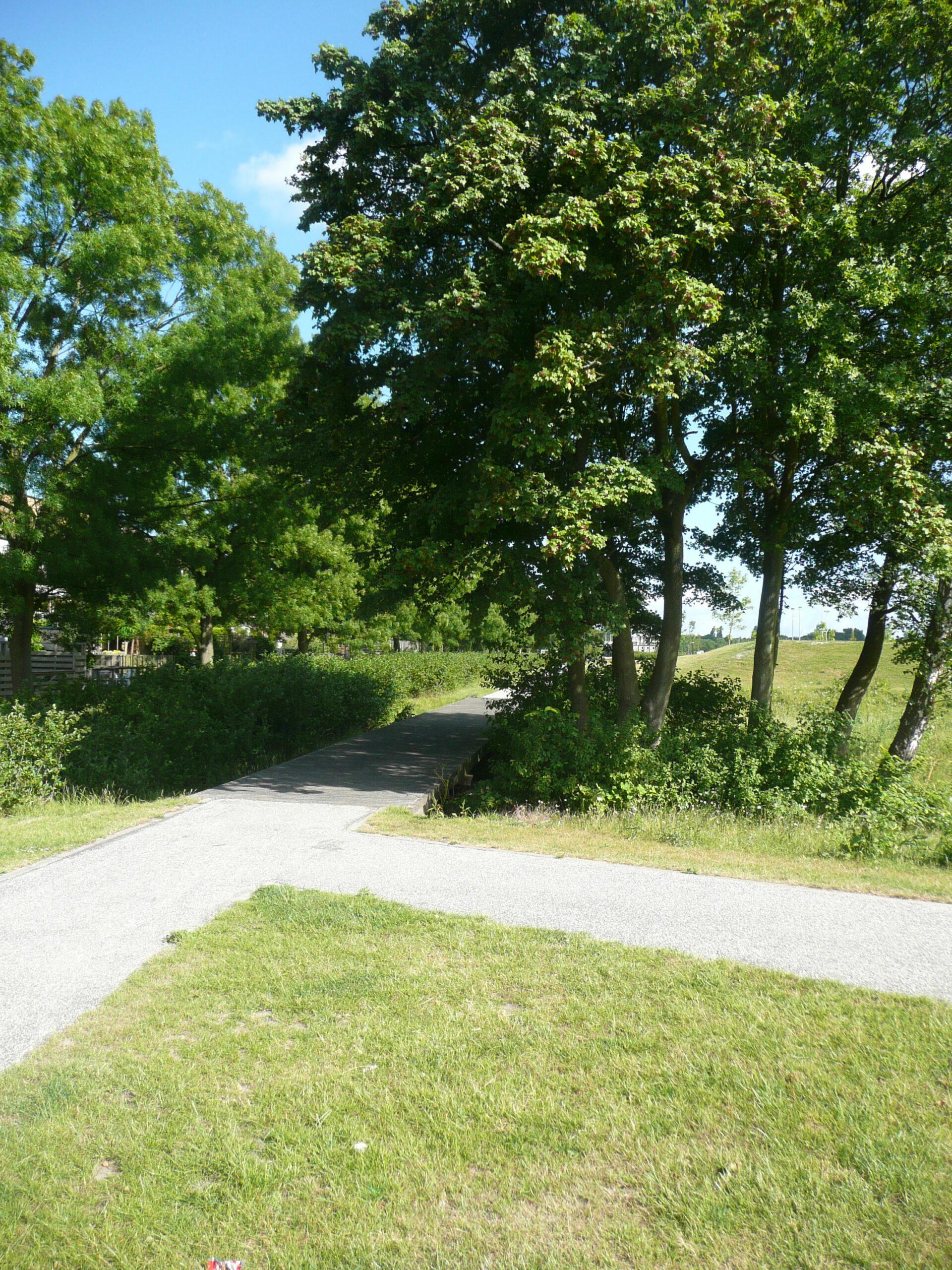 Diekman-landschapsarchitecten_park-endezant_rijswijk_foto2_111_0174