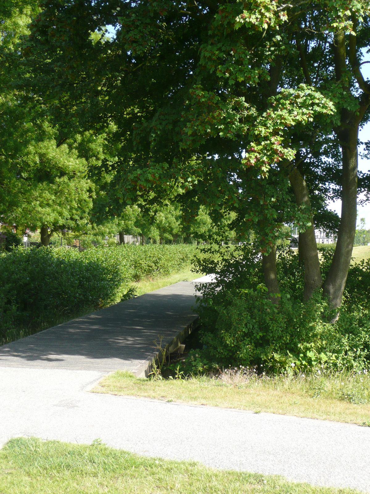 Diekman-landschapsarchitecten_park-endezant_rijswijk_foto3_111_0175