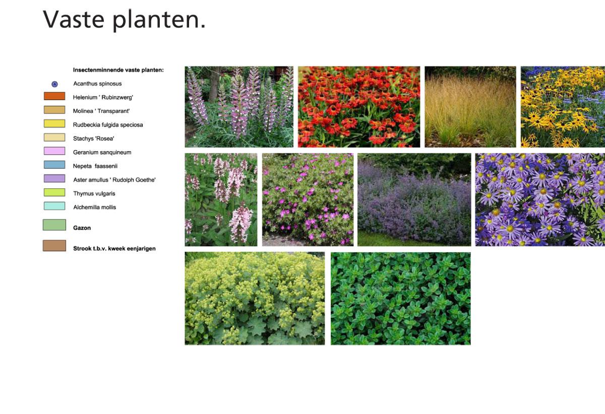 Pages-from-presentatie-6-okt-2015-2