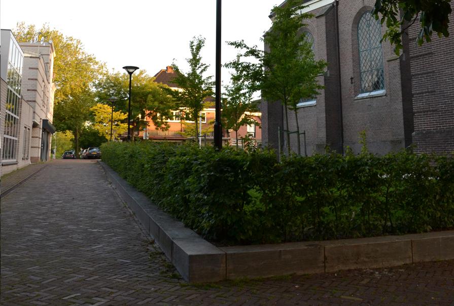 diekman-landschapsarchitecte-_Dorpsplein-Amstelveen_omzoming