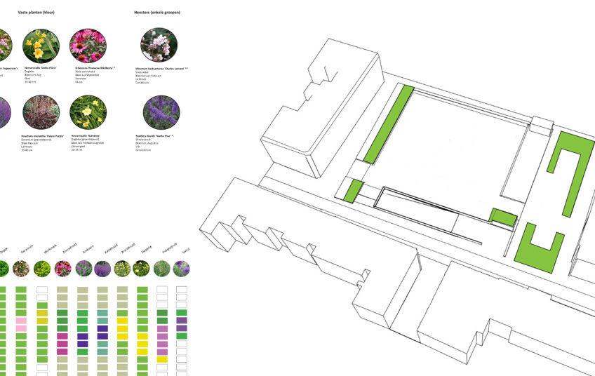 diekman-landschapsarchitecten-beplantingsplan-nartachavandenban-848×536