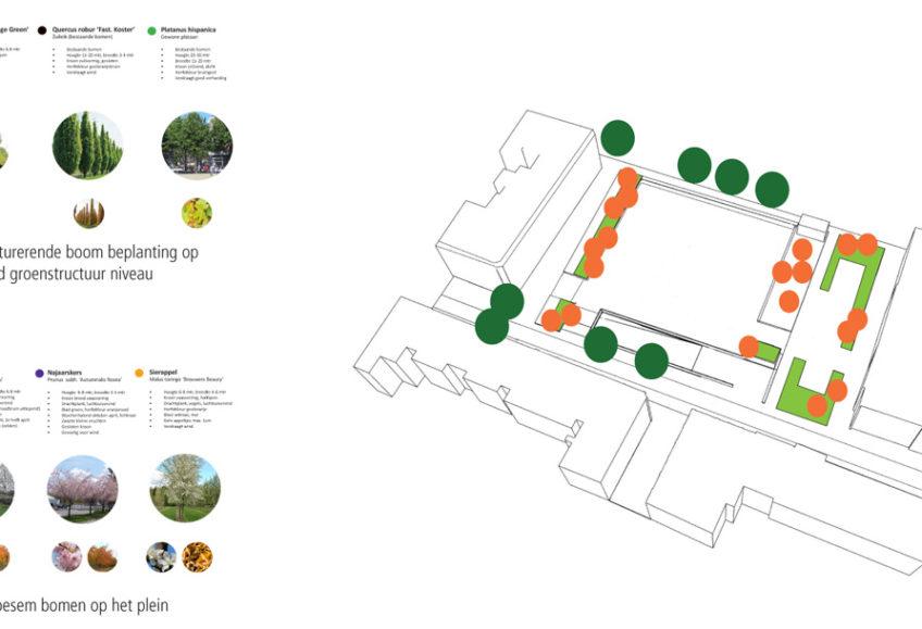 diekman-landschapsarchitecten-bomenplan-848×579