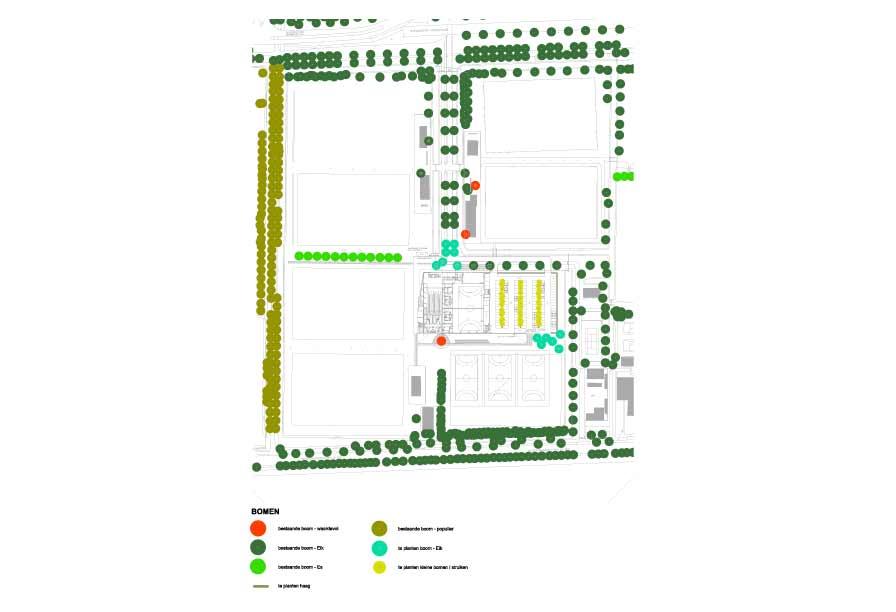 diekman-landschapsarchitecten-sportpark-Zuilen-Utrecht-boomstructuur