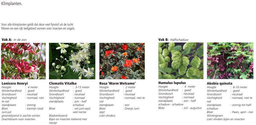 klimplanten-TPZO