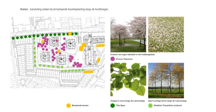 Diekman-landschapsarchitecten_Lucentterrein_bomenschema